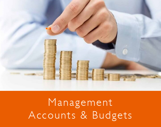 Management Accounts and Budgets