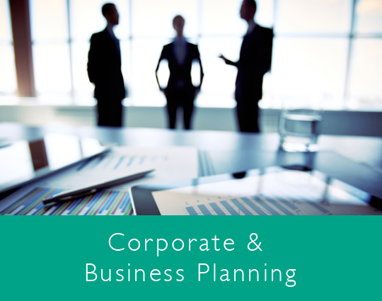 Corporate and Business Planning